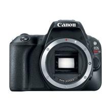 Canon EOS Rebel SL2 DSLR Camera - Body Only