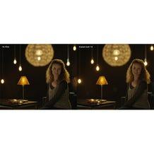 """Schneider Optics 6.6 x 6.6"""" Radiant Soft 1/4 Filter"""