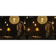 """Schneider Optics 4 x 5.65"""" Radiant Soft 2 Filter"""